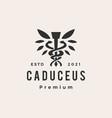 caduceus leaf hipster vintage logo icon vector image