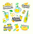 homemade lemonade set typography and doodle vector image