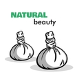 Isolated Spa Objects vector image vector image