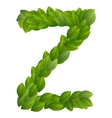 Letter Z of green leaves alphabet vector image vector image