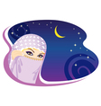 arabian night vector image