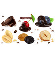 berries nuts and chocolate blueberry cherry vector image vector image