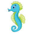 cute seahorse cartoon vector image vector image