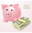 Piggy bank with dollars poster vector image vector image
