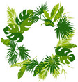 wreath tropical leaves vector image vector image