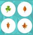 flat icon leaf set of linden alder leaf and vector image