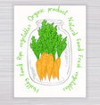 hand drawn poster with jar full of carrot with vector image