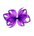 Purple Violet Bow Close up on Background vector image vector image