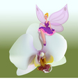 small fairy sitting on a flower vector image vector image