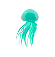 teal green jellyfish drawing with long tentacles vector image