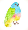 Watercolor floral bird vector image