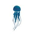 beautiful blue marine wild animal jellyfish vector image