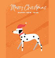christmas and new year holiday dalmatian dog card vector image vector image
