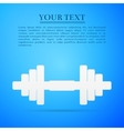 Dumbbell flat icon on blue background vector image vector image