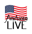 american flag with inscription brush american live vector image vector image
