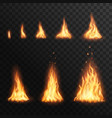 flaring up fire stages burning campfire vector image