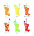 Fruit Lemonades Set with Inscription vector image vector image