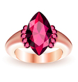 Ring with gemstone vector image