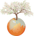 earth - apple tree vector image vector image
