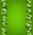 floral border with white apple or cherry blossoms vector image vector image