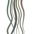 hair braids vector image