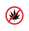 hemp leaf in red circle prohibiting sign vector image