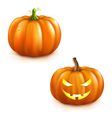 Pumpkin Set For Halloween vector image vector image