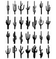 silhouettes of cactus vector image vector image