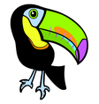 Toucan vector image vector image