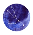 Watercolor horoscope sign Taurus vector image