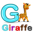 cute giraffe and alphabet vector image