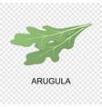 arugula icon isometric style vector image vector image