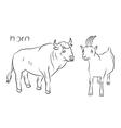 bull goat vector image