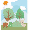 camping cute rabbit and deer pine trees grass sun vector image vector image