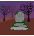Grave in the cemetery cartoon vector image