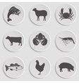Icons Set -Animal Meat Seafood vector image vector image