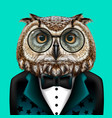 owl creative colorful hand-drawn portrait owl vector image