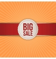Realistic Christmas big Sale Banner with Ribbon vector image