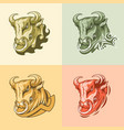 set four pictures bull on different backgrounds vector image