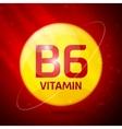 Vitamin B6 icon vector image vector image