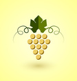 Yellow grape vector image vector image