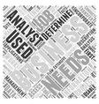 business analyst job description Word Cloud vector image vector image