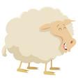 cartoon sheep farm animal vector image vector image