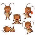 collection of funny cockroach cartoon vector image