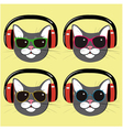 funny cats in music headphones and sunglasses vector image vector image