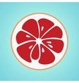 Grapefruit stylish icon Retro juicy fruit logo vector image