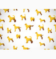 horizontal card pattern with cute cartoon gold vector image vector image