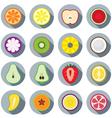 Piece of Fruits Icon vector image vector image