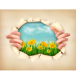 Retro nature background with grass and flowers and vector image vector image