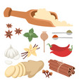 seasoning food herbs natural healthy spices vector image